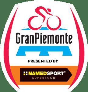 GPIE_2018_Logo